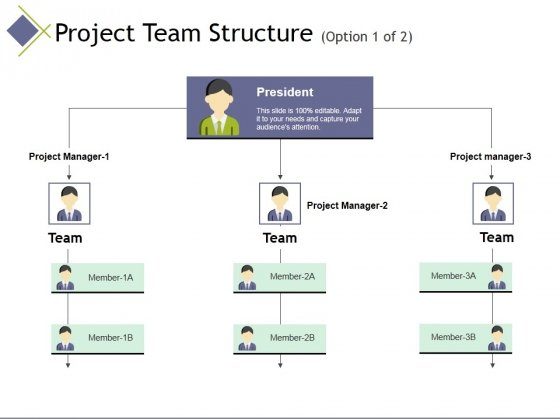 Project Team Structure Template 1 Ppt PowerPoint Presentation Model Demonstration