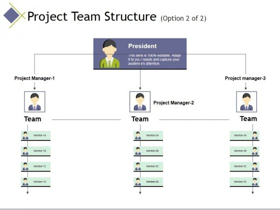 Project Team Structure Template 2 Ppt PowerPoint Presentation Infographics Ideas