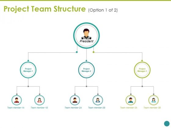 Project Team Structure Template Ppt PowerPoint Presentation Outline Graphic Tips