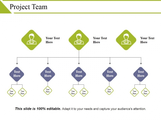 Project Team Template 2 Ppt PowerPoint Presentation Layouts Gallery