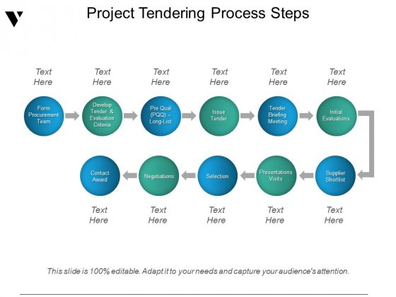 Project Tendering Process Steps Ppt PowerPoint Presentation Professional Brochure