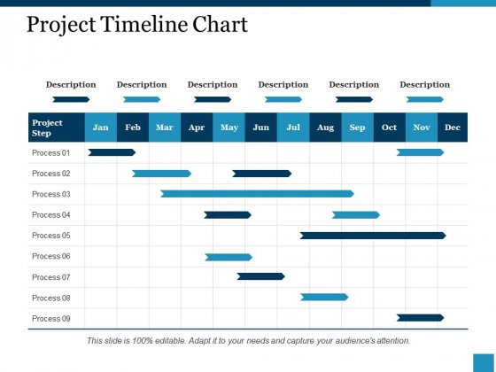 Project Timeline Chart Ppt PowerPoint Presentation Portfolio Gridlines