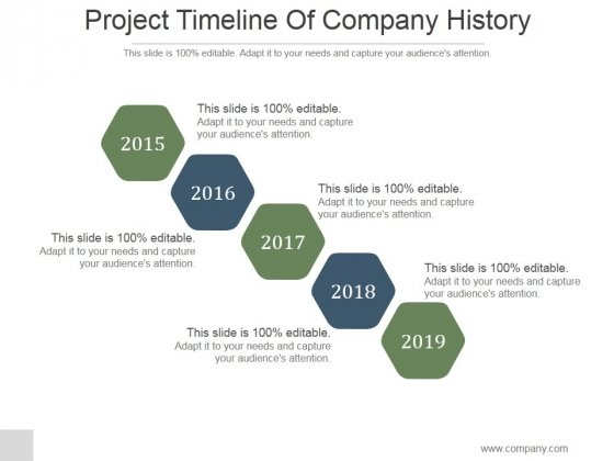 Project Timeline Of Company History Ppt PowerPoint Presentation Rules