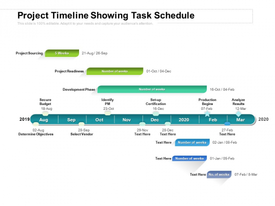 Project Timeline Showing Task Schedule Ppt PowerPoint Presentation Outline Examples