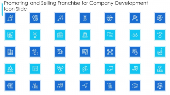 Promoting And Selling Franchise For Company Development Icon Slide Pictures PDF