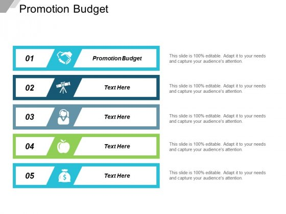 Promotion Budget Ppt Powerpoint Presentation Portfolio Graphics Template Cpb