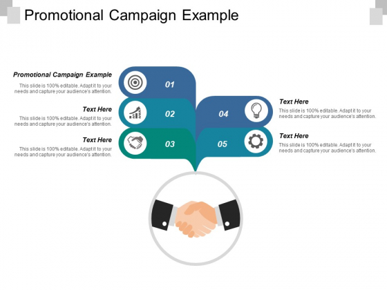 Promotional Campaign Example Ppt PowerPoint Presentation Infographics Information