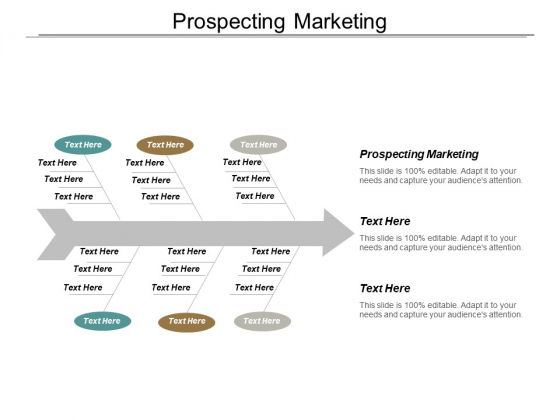 Prospecting Marketing Ppt PowerPoint Presentation File Outline Cpb
