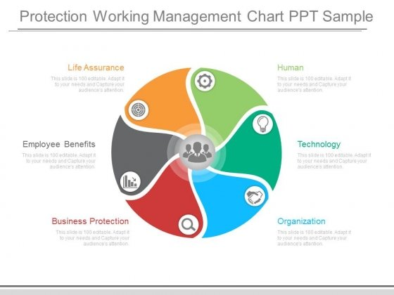 Protection Working Management Chart Ppt Sample