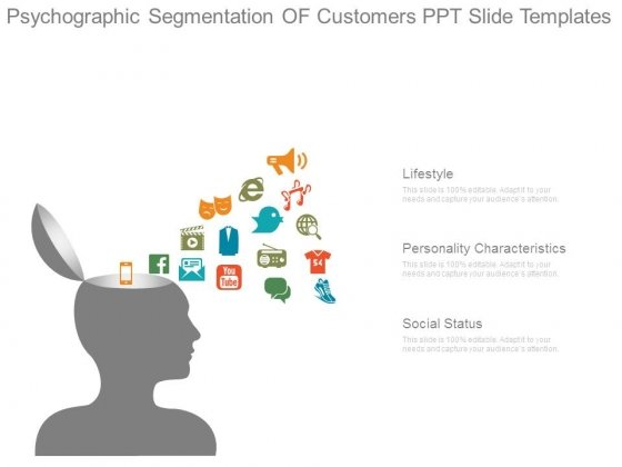 Psychographic Segmentation Of Customers Ppt Slide Templates