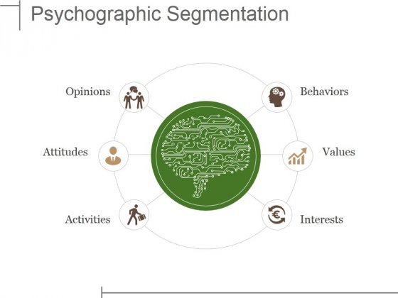 Psychographic Segmentation Ppt PowerPoint Presentation Outline Display