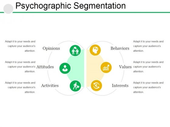 Psychographic Segmentation Ppt PowerPoint Presentation Pictures Samples