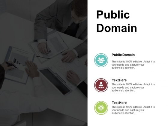 Public Domain Ppt PowerPoint Presentation Portfolio Example Introduction Cpb