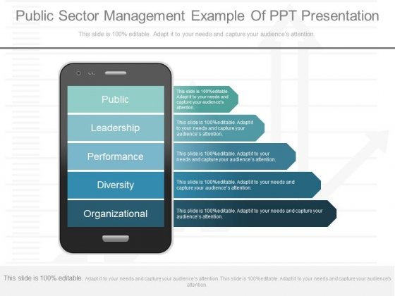Public Sector Management Example Of Ppt Presentation