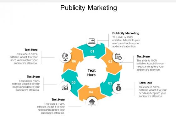 Publicity Marketing Ppt PowerPoint Presentation Slides Slideshow Cpb