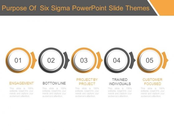 Purpose Of Six Sigma Powerpoint Slide Themes