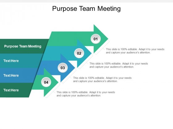 Purpose Team Meeting Ppt PowerPoint Presentation Show Brochure Cpb