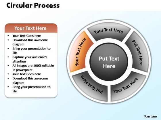 PowerPoint Design Business Circular Process Ppt Themes