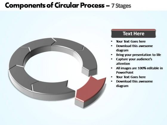PowerPoint Design Diagram Components Of Circular Ppt Slide