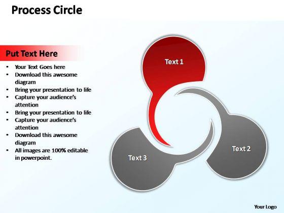 PowerPoint Design Leadership Circle Diagram Ppt Template