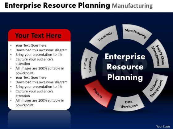 PowerPoint Design Slides Leadership Enterprise Resource Ppt Slide