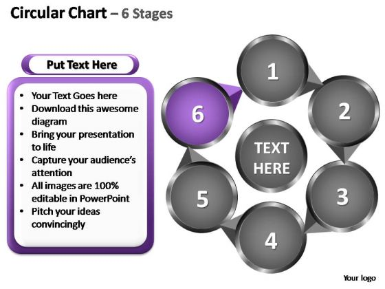 PowerPoint Design Slides Marketing Circular Ppt Themes