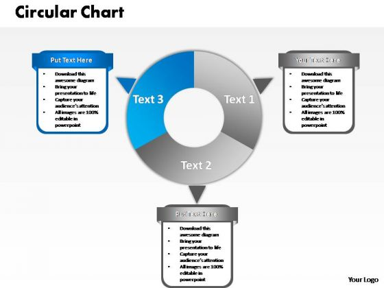 PowerPoint Design Slides Strategy Circular Chart Ppt Presentation