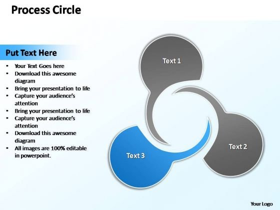 PowerPoint Design Teamwork Circle Diagram Ppt Theme