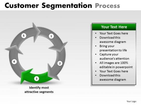 PowerPoint Designs Business Success Customer Segmentation Process Ppt Presentation Designs