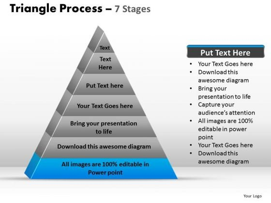PowerPoint Designs Leadership Triangle Process Ppt Presentation Designs