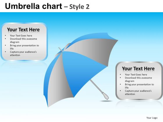 PowerPoint Presentation Corporate Leadership Umbrella Chart Ppt Process