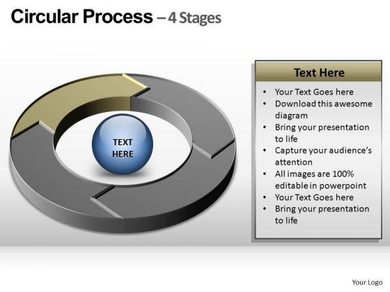 PowerPoint Presentation Graphic Circular Ppt Slide Layout