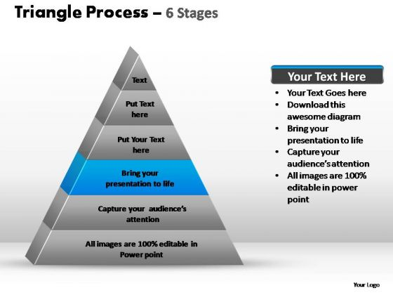 PowerPoint Presentation Leadership Triangle Process Ppt Design