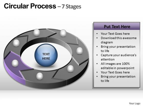PowerPoint Process Company Circular Process Ppt Slide Designs