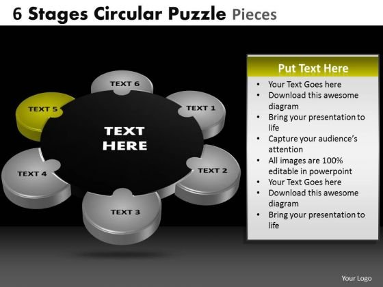 PowerPoint Slide Chart Circular Puzzle Ppt Slide