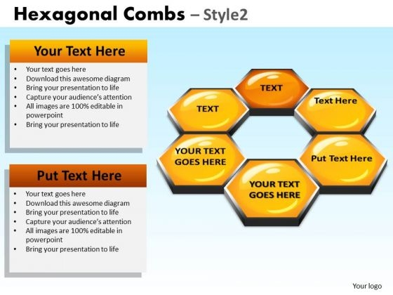 PowerPoint Slidelayout Executive Success Hexagonal Combs Ppt Theme