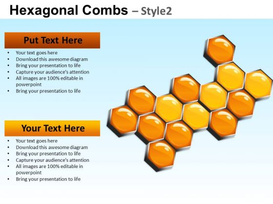 PowerPoint Templates Business Success Hexagonal Combs Ppt Designs