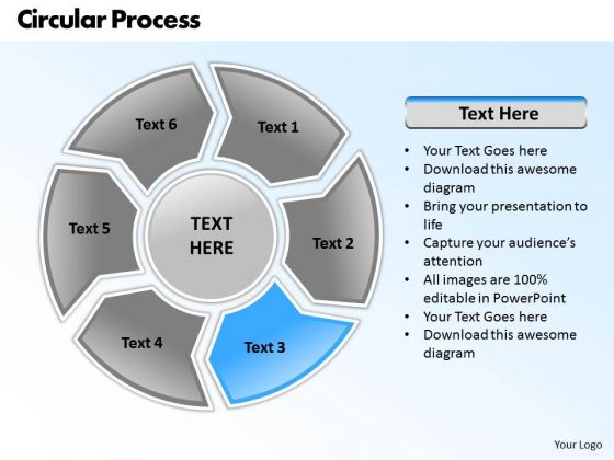 Ppt Circular Nursing Process PowerPoint Presentation 6 Aspects Templates