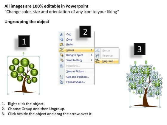 ppt_family_tree_genealogy_2