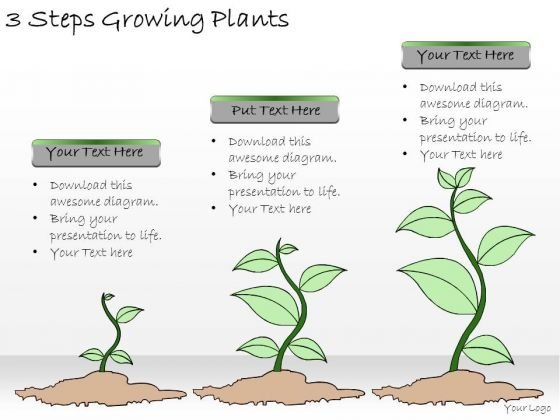 Ppt Slide 3 Steps Growing Plants Marketing