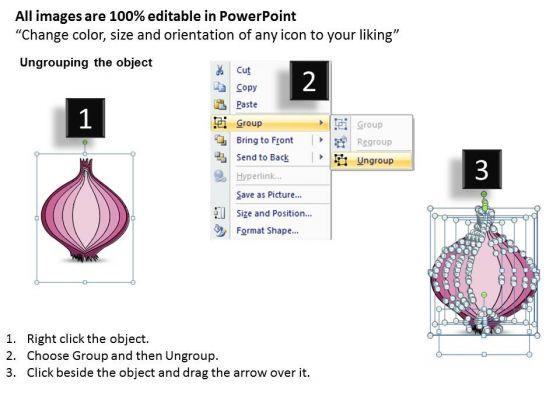ppt_slide_describe_business_steps_onion_diagram_plan_2