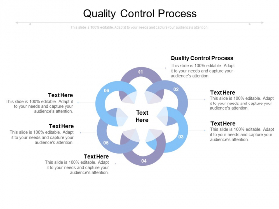 Quality Control Process Ppt PowerPoint Presentation Gallery Background Images Cpb