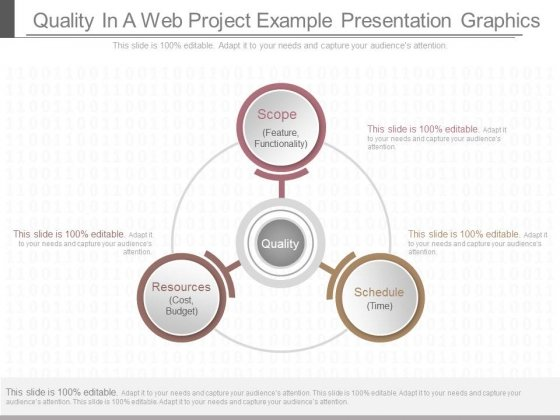 Quality In A Web Project Example Presentation Graphics