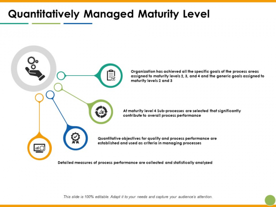 Quantitatively Managed Maturity Level Ppt PowerPoint Presentation Professional Topics
