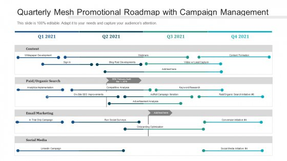 Quarterly Mesh Promotional Roadmap With Campaign Management Background