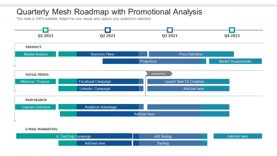 Quarterly Mesh Roadmap With Promotional Analysis Professional