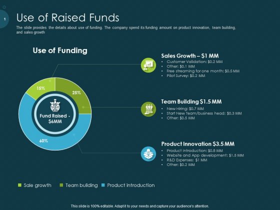 Raise Funding From Pre Seed Capital Use Of Raised Funds Professional PDF