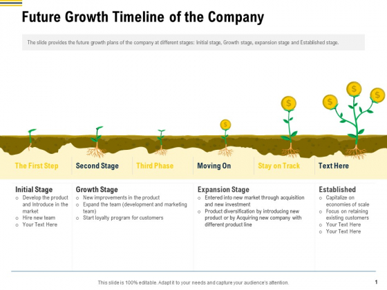 Raise Funding From Pre Seed Money Future Growth Timeline Of The Company Designs PDF