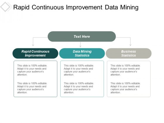 Rapid Continuous Improvement Data Mining Statistics Business Statistics Ppt PowerPoint Presentation Pictures Introduction