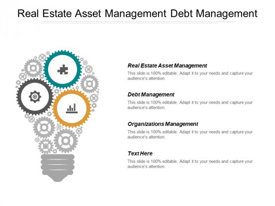 Real Estate Asset Management Debt Management Organizations Management Ppt PowerPoint Presentation Examples